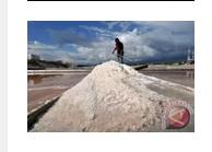 BPPT lakukan rekayasa teknologi tingkatkan produksi garam