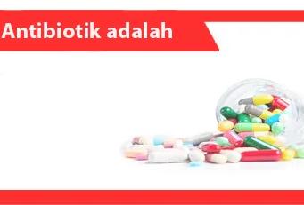 Antibiotik adalah: Pengertian, Manfaat, Fakta, Cara Kerja, Jenis